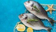 فوائد سمك الشعور