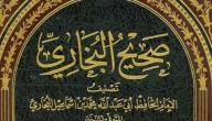 حديث صحيح البخاري ومسلم