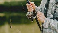 افضل طعم لصيد السمك النهري