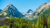 كيف تتشكل الجبال