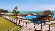 جزيرة ابو الابيض