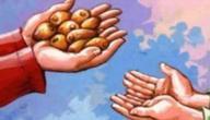 زكاة عيد الفطر للفرد الواحد
