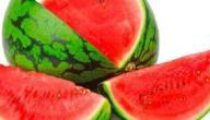 حديث الرسول عن البطيخ