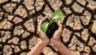 بعض مظاهر تدهور التربة