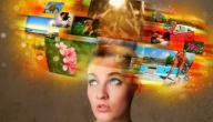 بحث عن الذاكرة في علم النفس