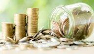 مفهوم المالية العامة