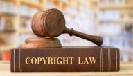قانون حماية الملكية الفكرية
