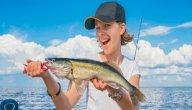 طريقة صيد السمك الكبير