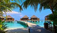 السفر إلى جزر الكناري