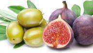 أسماء فاكهة من ثلاث حروف