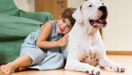 هل تربية الكلاب تحسن من صحة الطفل النفسية؟