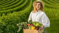 أفكار إبداعية للزراعة المنزلية