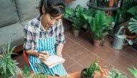 9 خضراوات ازرعيها في حديقتك المنزلية