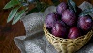 فاكهة البخارة وفوائدها: لصحة جسمكِ ورشاقته!