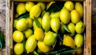 فوائد الليمون للصحة: البوتاسيوم يعزز صحة قلبك!