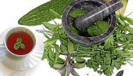 أعشاب تساعد على خفض ضغط الدم