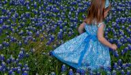 الثوب الأزرق في الحلم