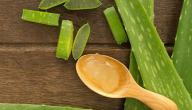 علاج هربس الشفتين بالأعشاب