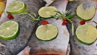 فوائد سمك الشعري