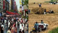 الفرق بين الحياة في الريف والمدينة