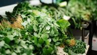 فوائد الخضروات الورقية
