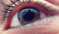 علاج ضعف البصر بماء زمزم
