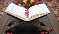 تصنيف:القرآن الكريم