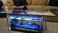 أشكال حوض السمك
