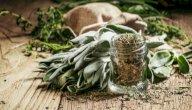 ما هي فوائد عشبة الميرمية؟
