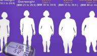 عدد السعرات الحرارية التي يحتاجها الجسم يوميا
