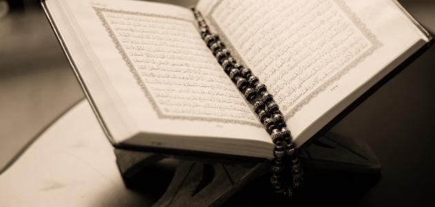 عدد الرسل في القرآن