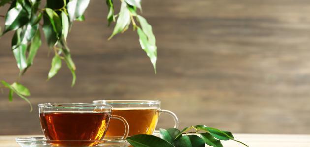 ماهي اضرار الشاي
