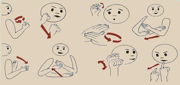 كيف اتعلم لغة الاشارة