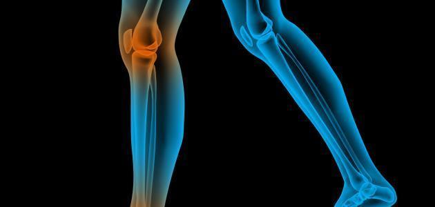 زيادة حجم العظام