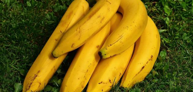 استخدام الموز للشعر