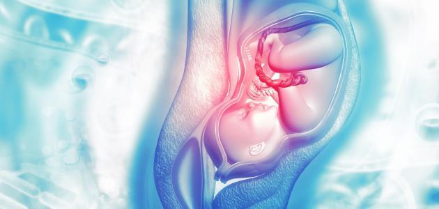أشياء تساعد على فتح عنق الرحم للولادة