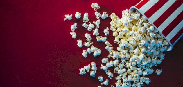 أحداث فيلم كتاب الأدغال: لحظات ممتعة مع مغامرات ماوكلي!
