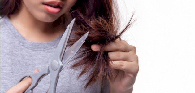 ما أفضل أنواع أجهزة تقصّف الشعر؟ وما أسعارها؟