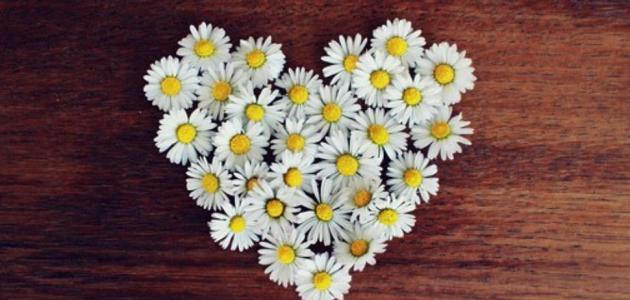 طرق التعبير عن الحب بدون كلام