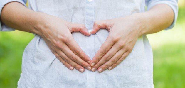 مراحل نمو الجنين في الشهر الثاني