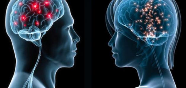 الفرق بين الرجل والمرأة في التكوين الجسدي