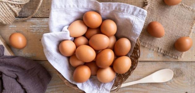 فوائد البيض للجسم