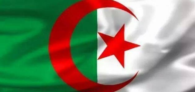 عدد المساجد في الجزائر