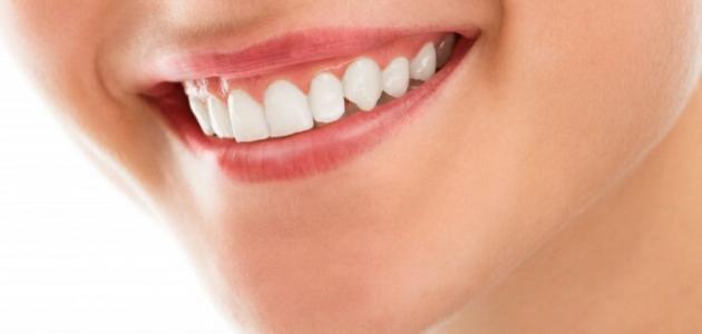 كم عدد الاسنان الطبيعيه