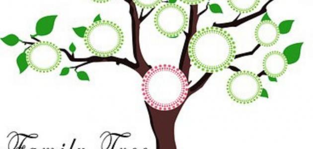 كيفية عمل شجرة العائلة حياتك