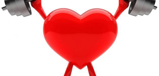 تمارين تقوية عضلات القلب